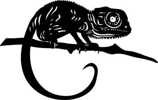 horoscopo azteca caiman