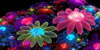 cual es la flor de mi signo del horoscopo