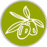 horoscopo celta Signo olivo